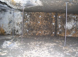 Microbial infested HVAC system