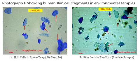 White Paper Shows Human Skin Cells Building Contaminate Source