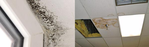 Indoor Hurricane Damage