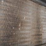Birds Affect HVAC Coils